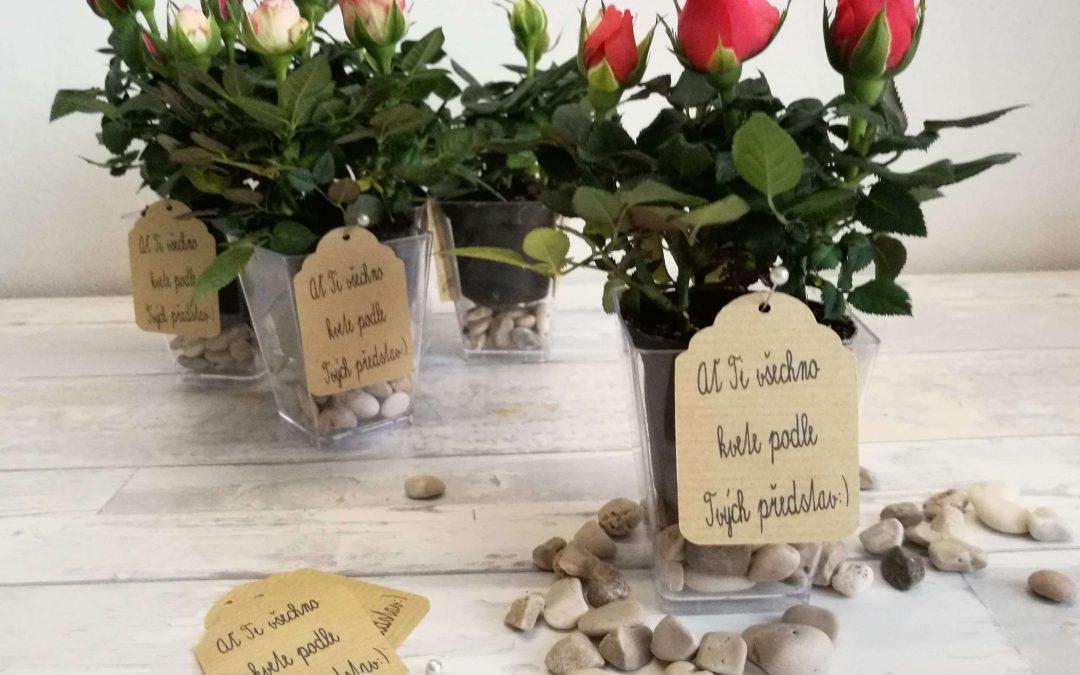 """""""Nech lásku vyrůst!"""" – květinové dárky se vzkazem"""
